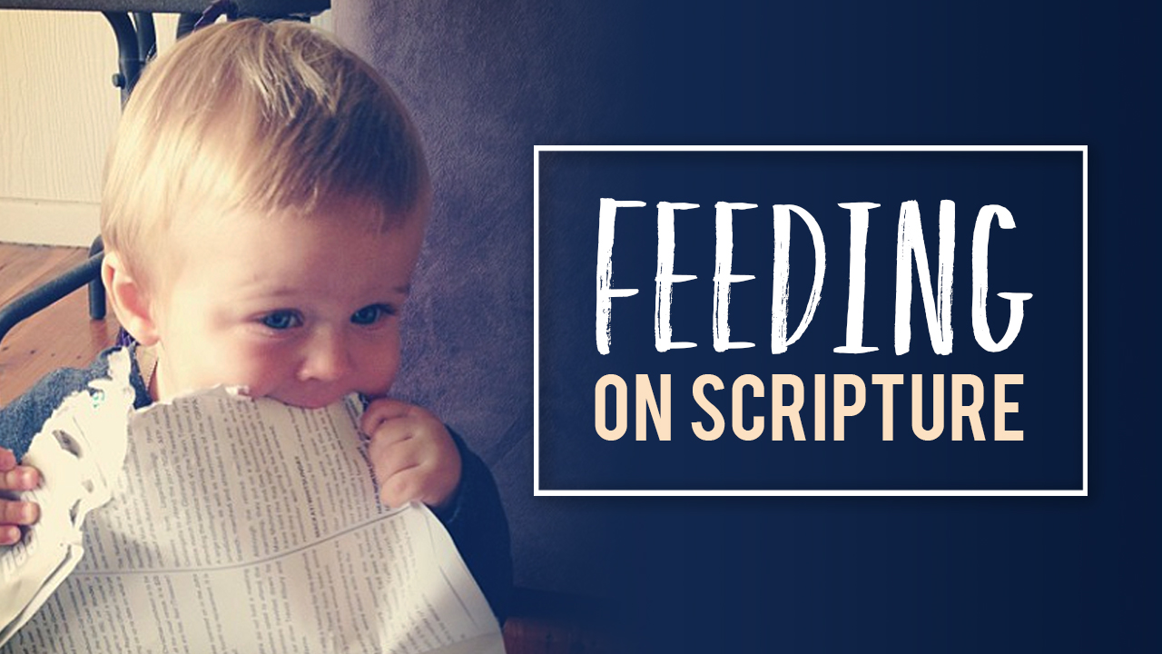Feed On Scripture Part 1