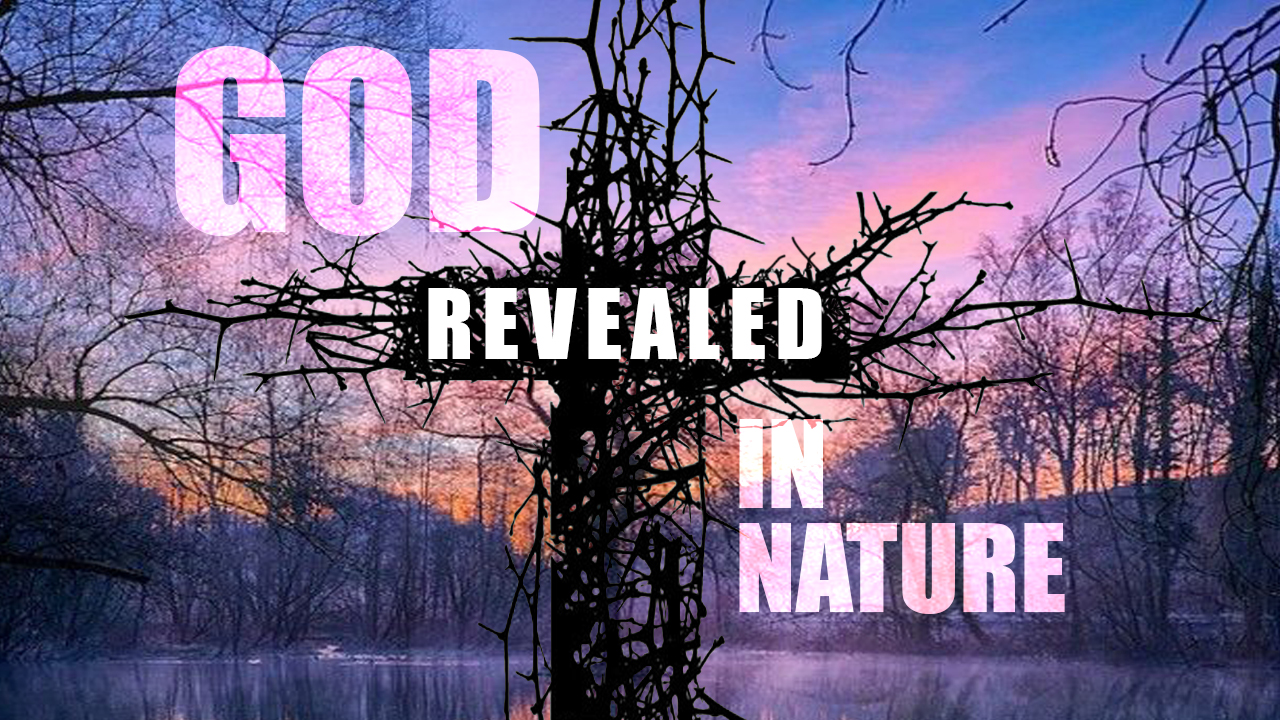 God Revealed In Nature - Origins