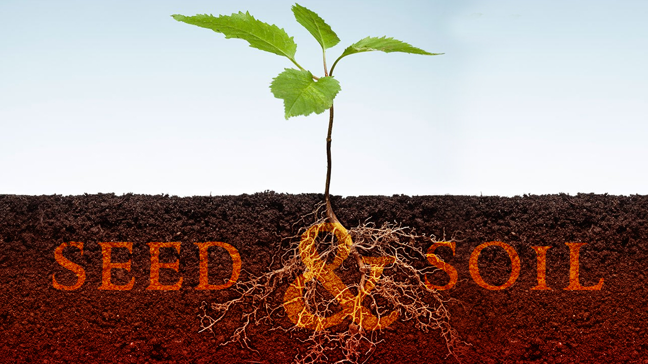 """Seed and Soil"""" (Lk. 8:4-15)"""